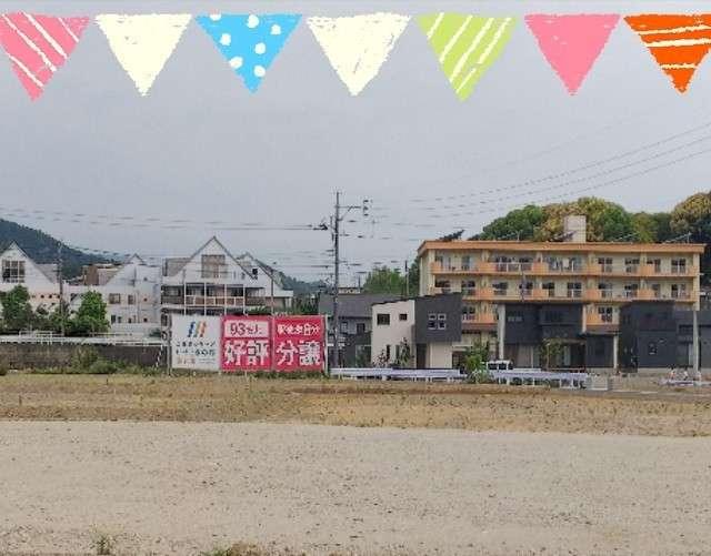 image 新☆情報